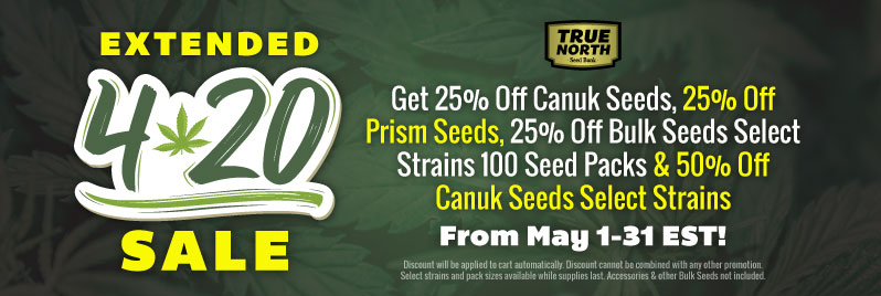 Prism Seeds