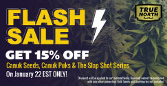 Flash Sale: 15% OFF Canuk Seeds