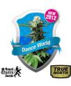 Dance World Feminized Seeds (Royal Queen Seeds)