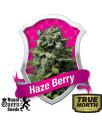 Haze Berry Feminized Seeds (Royal Queen Seeds)