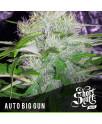 AUTO Big Gun FEMINIZED Seeds (Shortstuff Seeds)