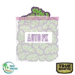 Auto PK Feminized Seeds (Oasis Genetics)