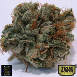 707 Headband REGULAR Seeds (BC Bud Depot)