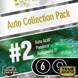 AUTO Collection pack #2 FEMINIZED Seeds (Paradise Seeds)