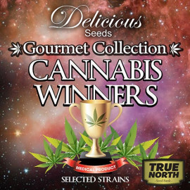 Feminized Gourmet Collection - Cannabis Winners #2 (Delicious Seeds)