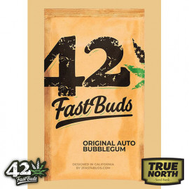 Original Auto BubbleGum Feminized Seeds (FastBuds)
