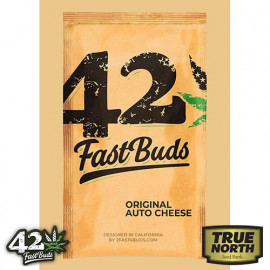 Original Auto Cheese Feminized Seeds (FastBuds)
