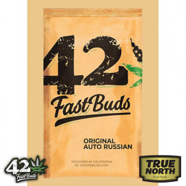 Original Auto Russian Feminized Seeds (FastBuds)