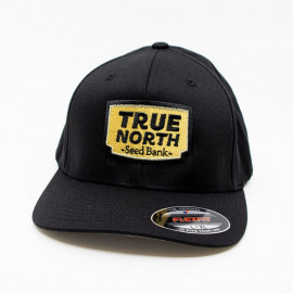 Flexfit Hat (True North Seed Bank) - Black