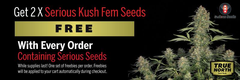 Serious Seeds Promo