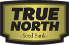 Buy Cannabis Seeds at True North Seedbank