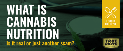 What Is Cannabis Nutrition? Is It Real Or Just  Another Scam