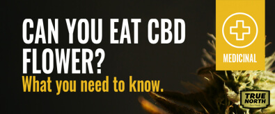 Can You Eat CBD Flower? What You Need To Know