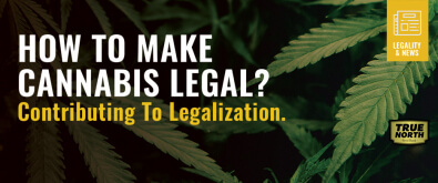 How To Make Cannabis Legal? Contributing To Legalization