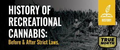 History Of Recreational Cannabis: Before & After Strict Laws