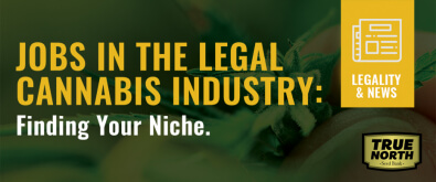 Jobs In The Legal Cannabis Industry: Finding Your Niche