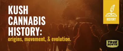 Kush Cannabis History - Origins, Movement, & Evolution