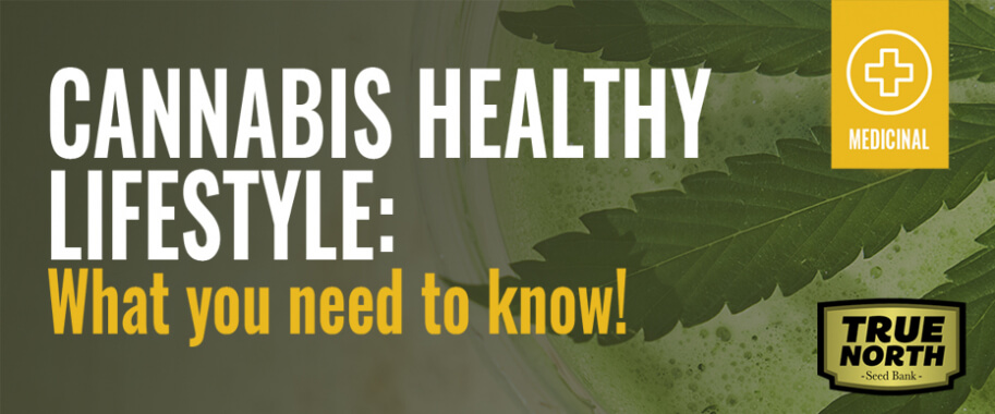 Cannabis Healthy Lifestyle - What You Need To Know