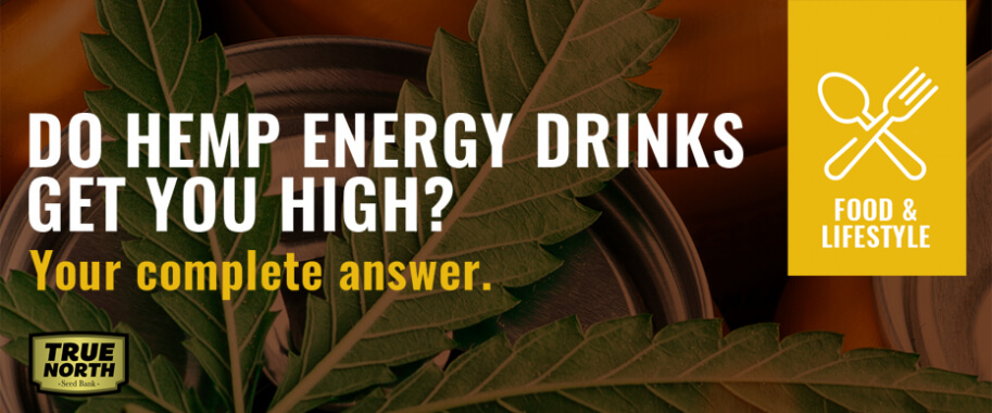 Do Hemp Energy Drinks Get You High? Your Complete Answer