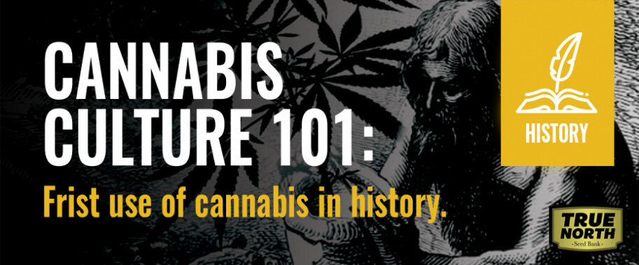 Cannabis Culture 101: First Use Of Cannabis In History