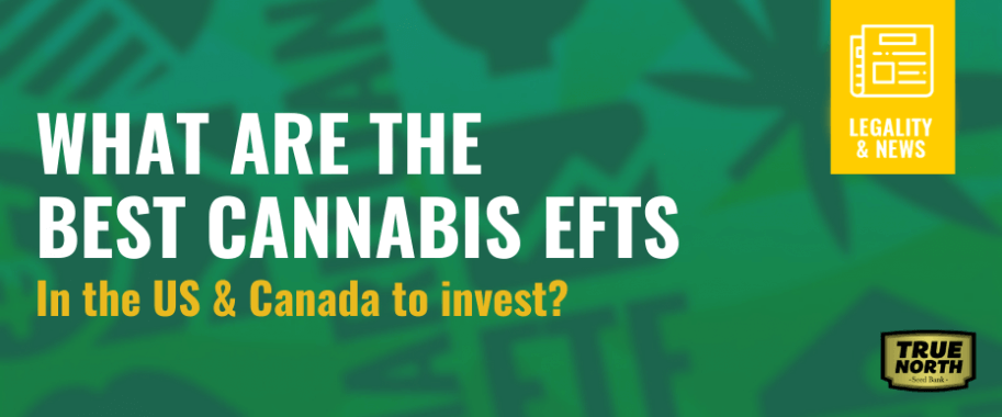 What Are The Best Cannabis ETFs In The US & Canada To Invest?